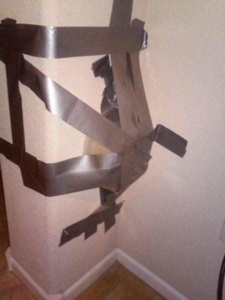 The Next Time You Have a Scorpion in Your House Just Try This