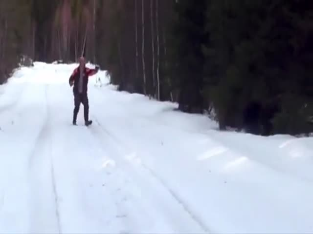 Swedish Man Scares the Shit Out of a Charging Bear  (VIDEO)