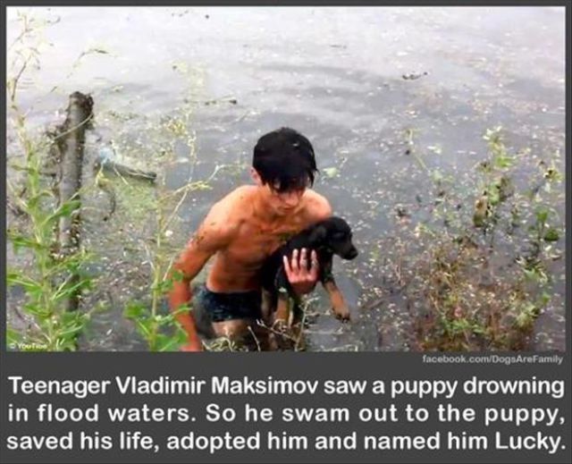 Moments of Human Kindness That Will Warm Your Heart