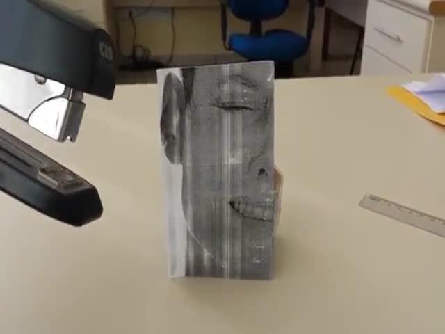 The Xenostapler  (VIDEO)