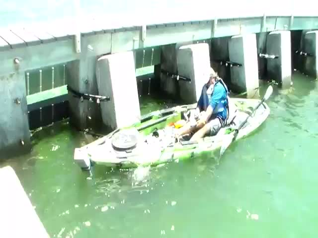 What a Catch!  (VIDEO)