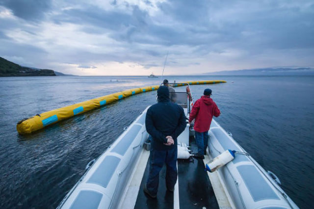 "A Young Guy Has Found a Way to Make the Ocean ""Self-Cleaning"""