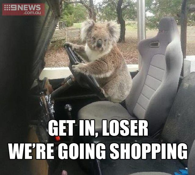 Meanwhile in Australia