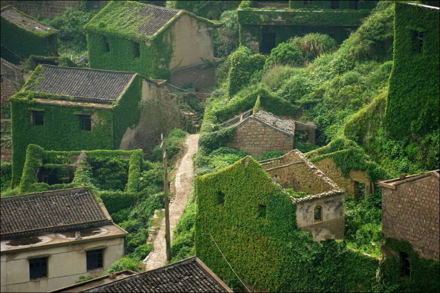 Abandoned Chinese Village Is Covered in a Sea of Greenery