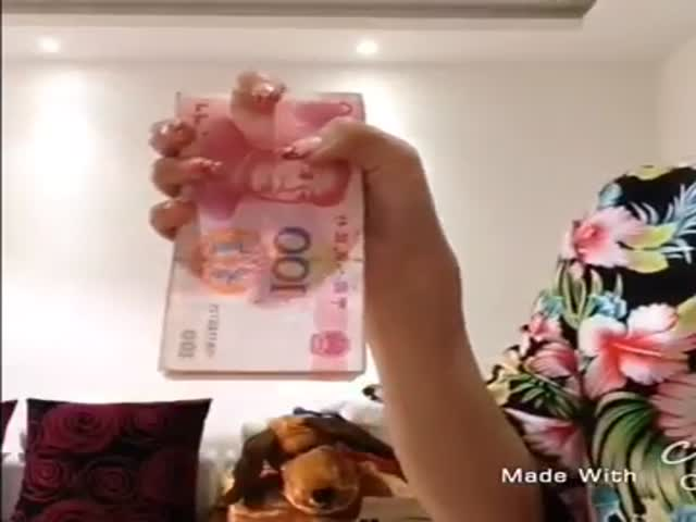 You Have Never Seen Anyone Count Money Like This before  (VIDEO)