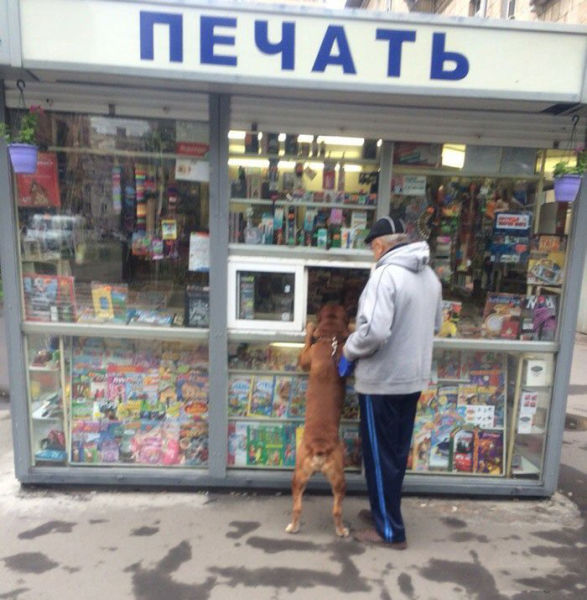 A Little of What You Can Expect to See in Russia