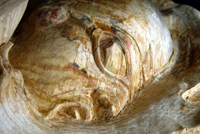 Sculptor Creates an Amazing Piece of Art Out of This Tree Trunk