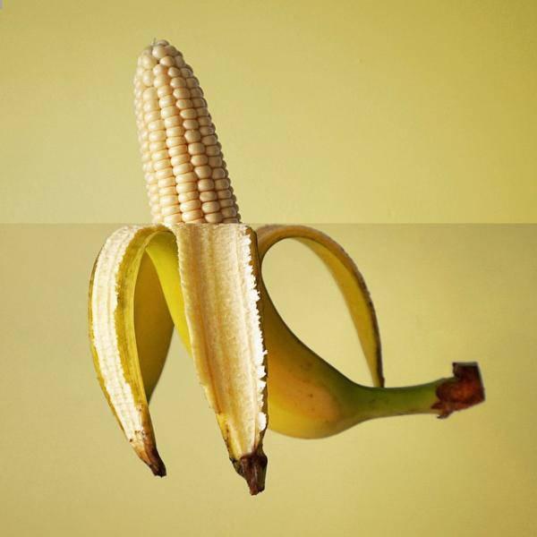 Creative and Amusing Photo Mashups