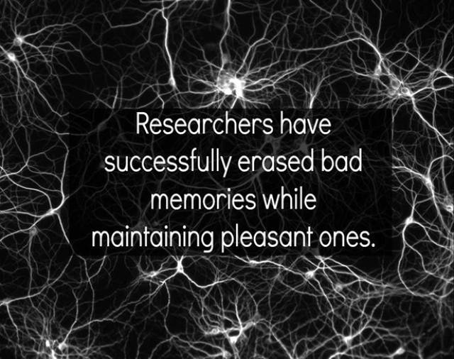 A Few Surprising Facts to Feed Your Brain Today