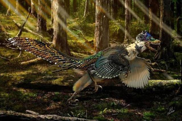A New Breed of Dinosaur Is Uncovered in China