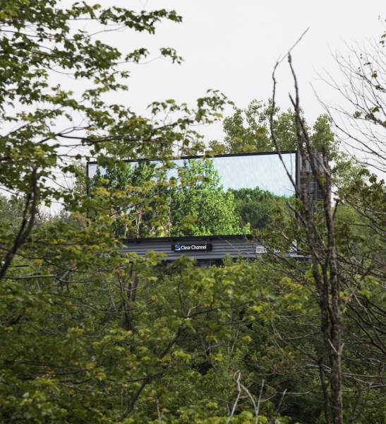 This Man Bought Digital Advertising Space on Massive Billboards and Used It to Bring Nature to the Masses