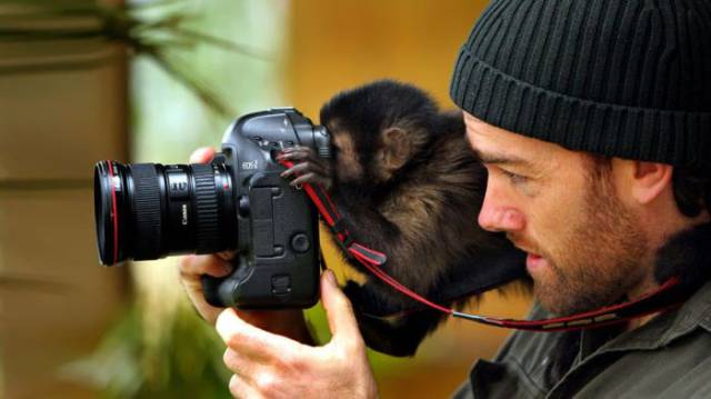 Animals That are Really Photographers in Disguise