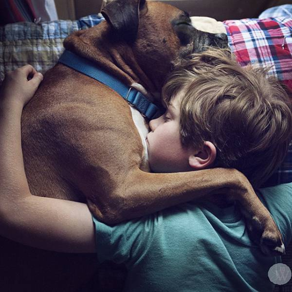 There Is No Love Like the Love of a Dog