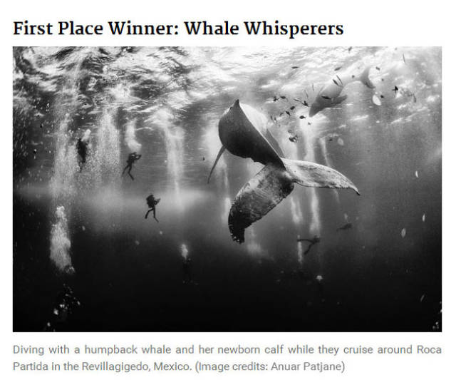 The 2015 National Geographic Traveler Photo Contest Entries That Won Top Honors