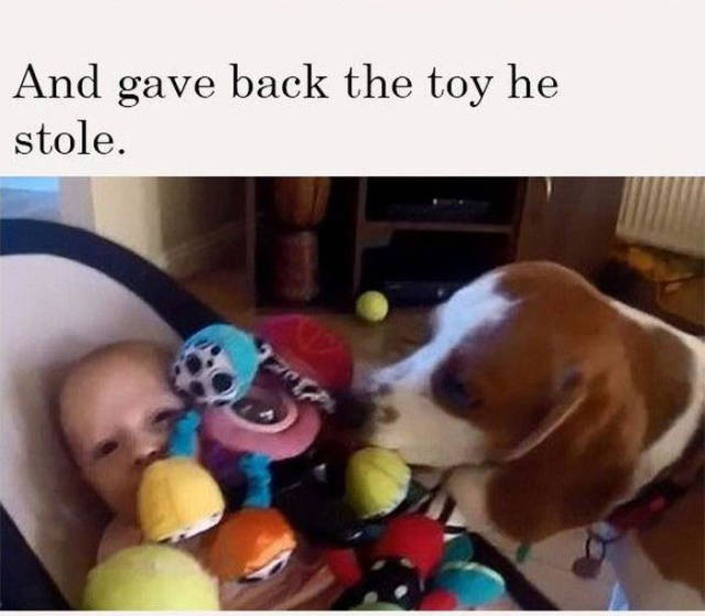 This Beagle Stops at Nothing to Make a Baby Stop Crying