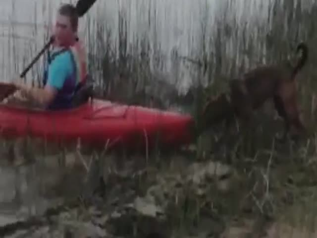 You Will Not Go Kayaking Today Human
