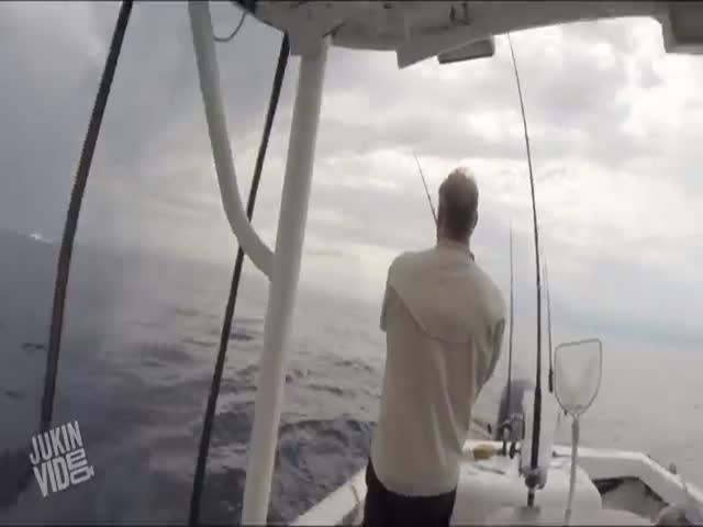 Fishermen Witness a Makro Shark Breaching Right Alongside Their Boat