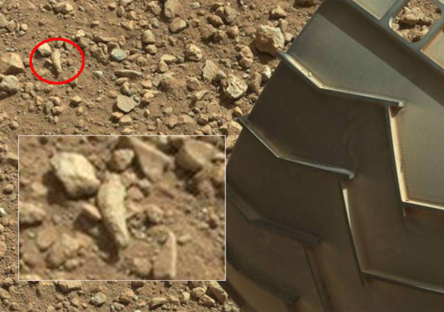 NASA's Mars Rover Camera Captures a Crab-like Alien on the Red Planet
