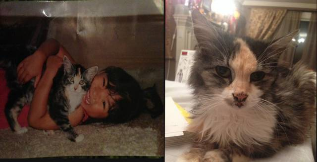 Touching First and Last Photos of Beloved Pets