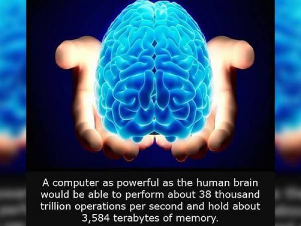 Interesting Facts about Anything and Everything