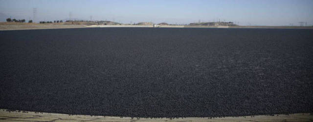 Shade Balls Help California Weather the Worst Drought in 20 Years