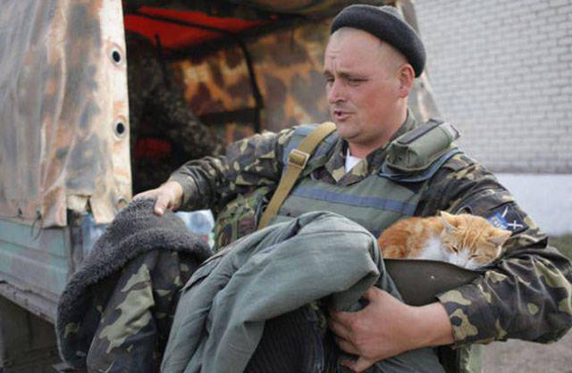 Soldiers Share Some Bonding Time with Cats