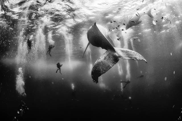 Epic Photos That Are Truly Fascinating