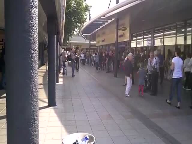 A Real Life Goose Parade on the Streets of the Netherlands