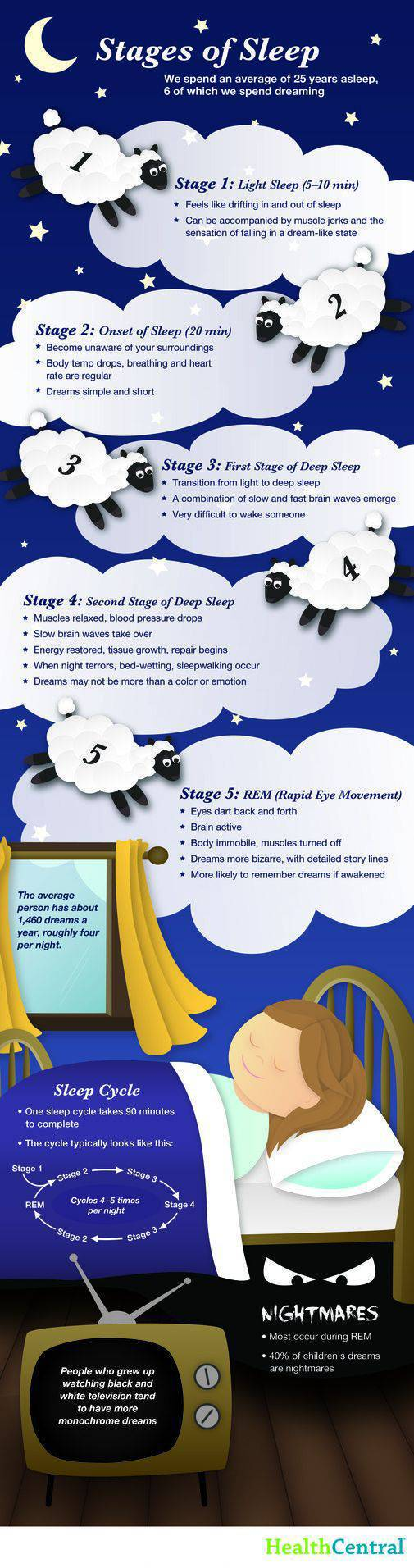 Everything You Ever Needed to Know about Sleep