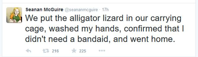 This Story Explains Why You Should Never Mess with a Lizard