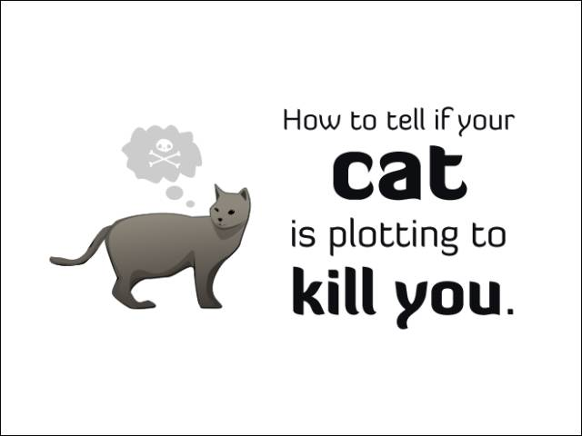 Ways to Tell Whether Your Cat Is Likely to Kill You in Your Sleep