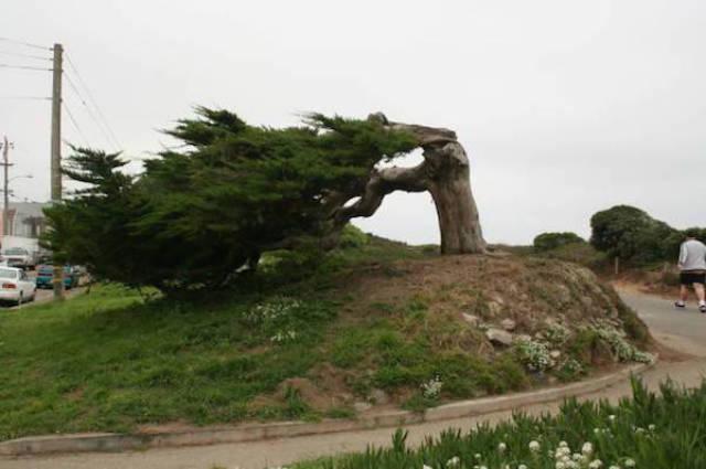When Wind Is a Total Jerk