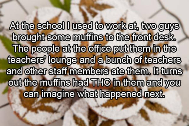 Teachers Reveal the Truth about What Really Goes on in the Teachers' Lounge