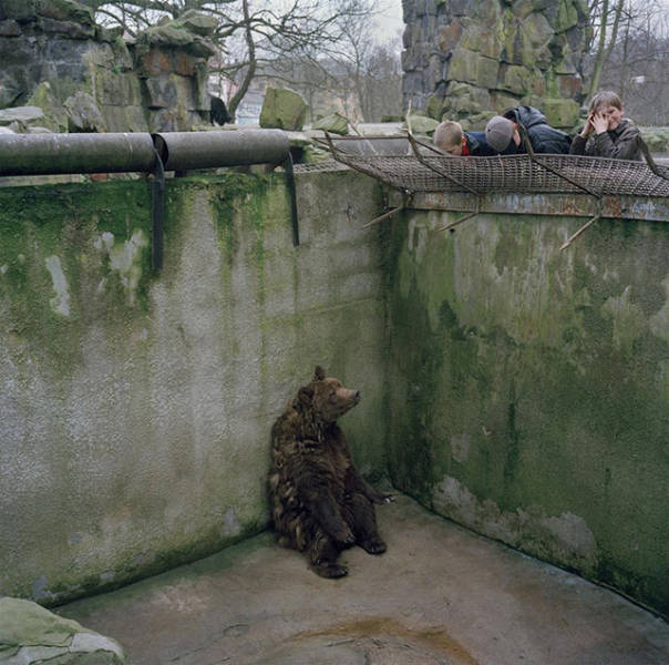 Pics That Are So Poignant and Fascinating