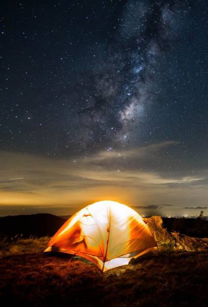 Daily Picdump