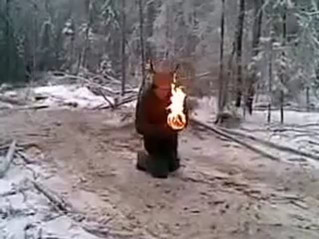 Russian Lumberjacks Do the Strangest Things in Their Spare Time