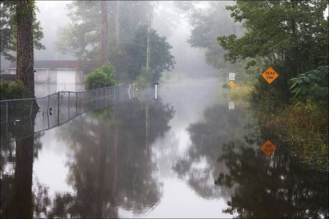 South Carolina Is Covered in Water after Being Hit by Heavy Rains