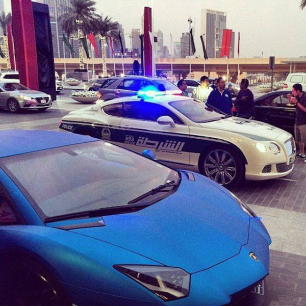 Things That You Can Expect to See Only in Dubai