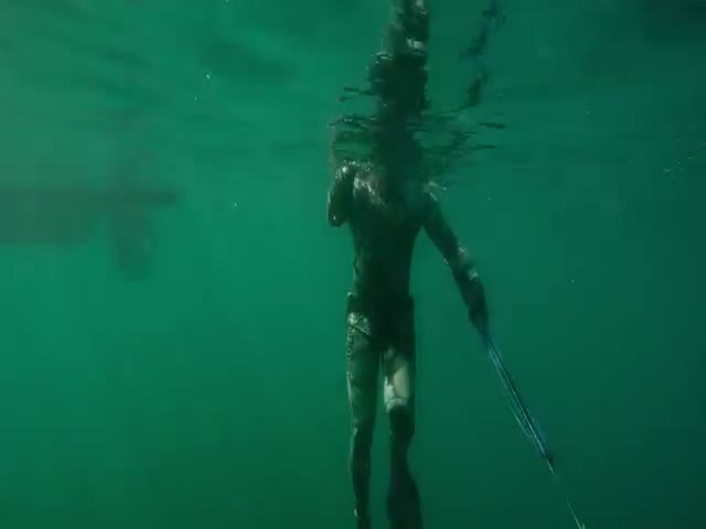 Diving in Murky Water Is Never a Very Good Idea