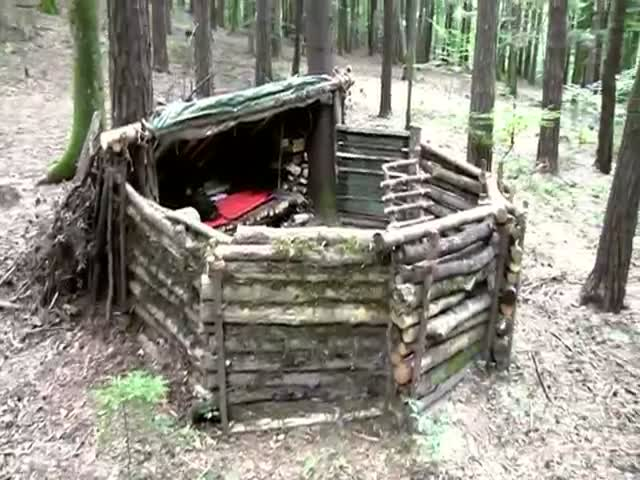 This Cool Shelter Is All You Need to Survive in the Woods