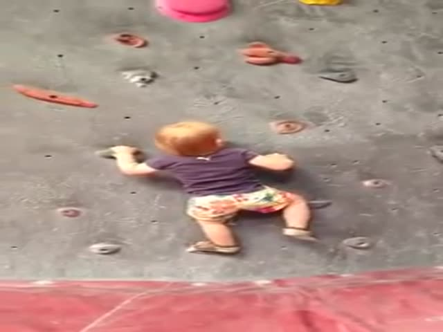 This 18 Month Old Baby Has a Future as a Champion Climber