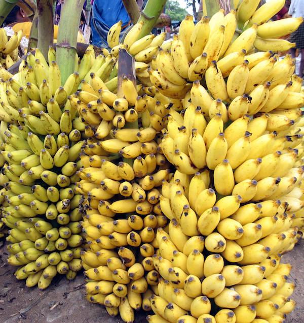 Для чего полезны бананы