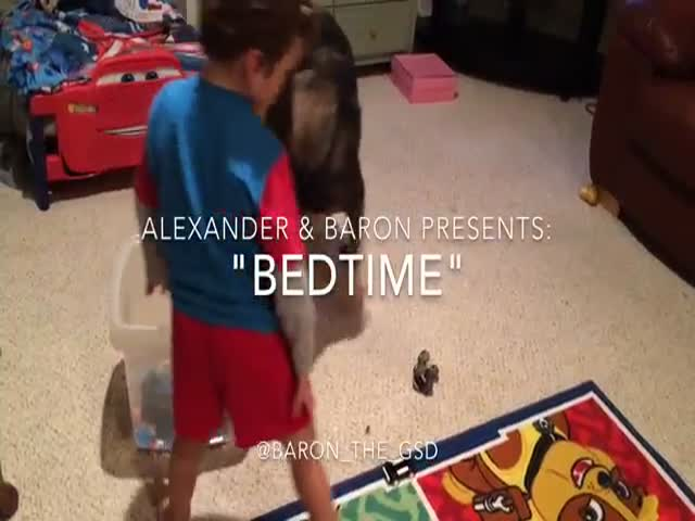 Helpful German Shepard Gets His Toddler Human Ready for Bed