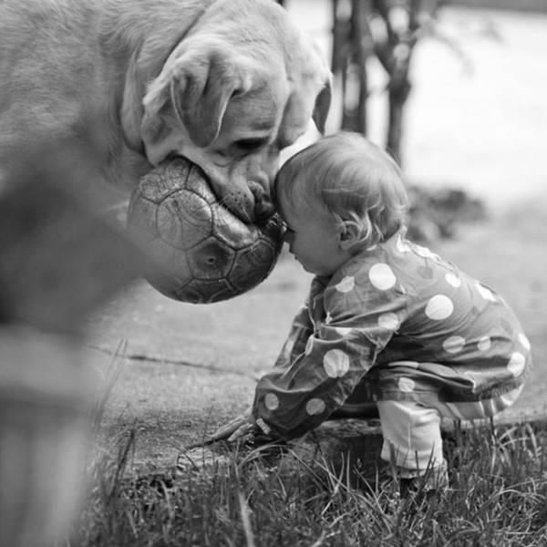 Photos That Speak a Thousand Words