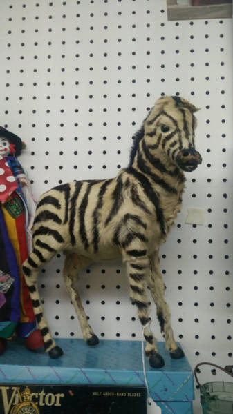 Awesome Thrift Shop Finds That Are a Little on the Weird Side
