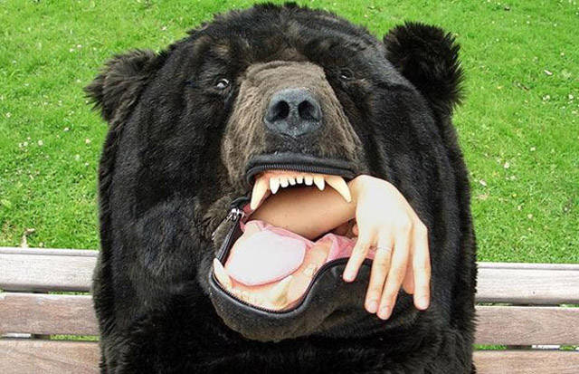 Now You Can Get a Good Night's Sleep in the Wild with This Bear to Keep You Safe and Warm