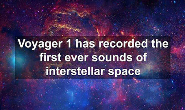 Geeky Facts That Will Appeal to Your Hidden Nerdy Nature