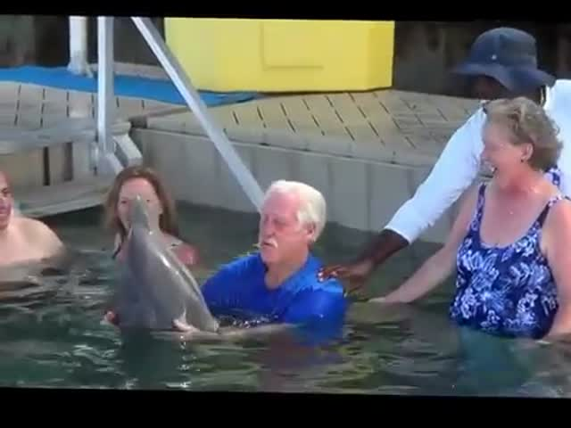This Cheeky Dolphin Can't Stop Spitting at an Old Man