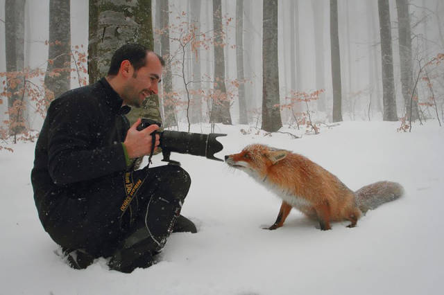 Fascinating Photos of Wildlife Photographers on the Job