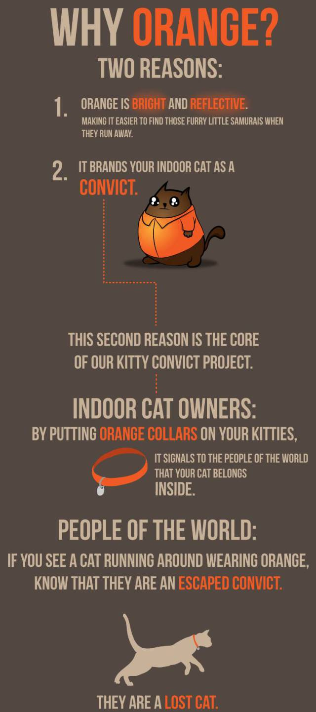 """The Oatmeal Makes a Valid Case for Dressing Your Cat in """"Convict Orange"""""""